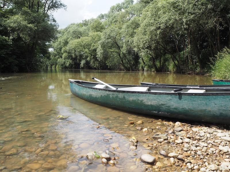 Blick auf die Raab während einer Kanu-Pause am Fluss.