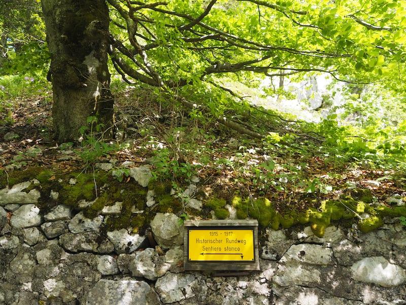 """... und zwar auf gut 1500 Meter Seehöhe, entlang des sogenannten """"Sentiero Historico"""" am österreichisch-italienischen Plöckenpaß."""