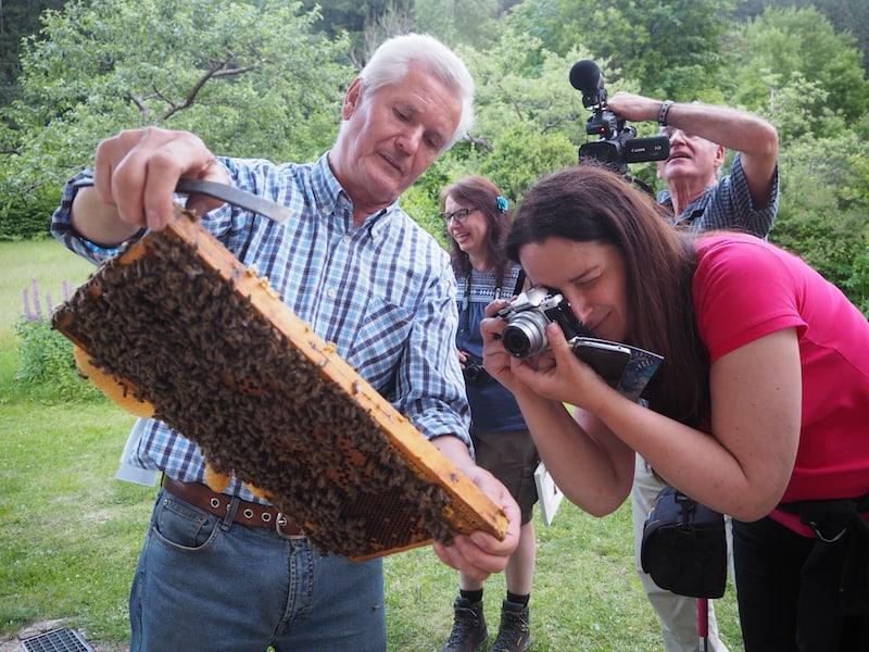 """Maria's Mann Michael dagegen präsentiert uns in aller Frische noch rasch seine """"Bienen vor dem Schlafengehen"""" und beruhigt diese vor dem Entnehmen aus dem Stock mit etwas Marihuana (!) ..."""