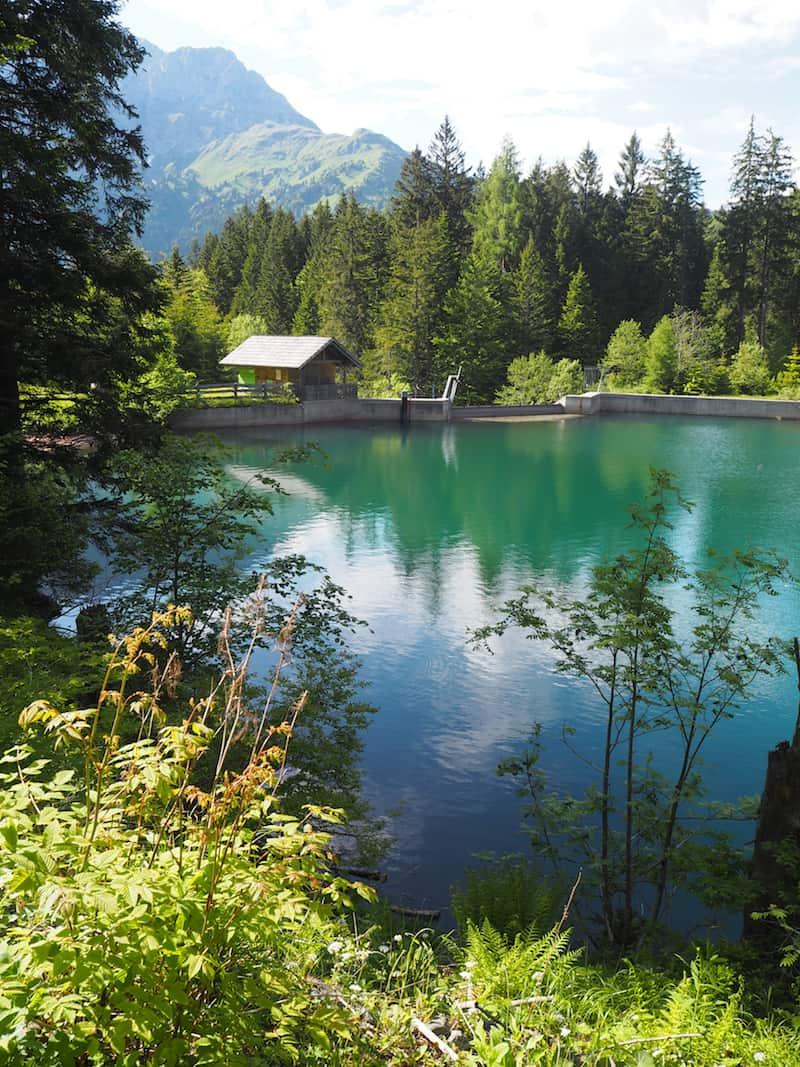 """... sowie auch sein Ausflug zum wunderschönen Grünsee, zu dem er uns spontan """"entführt"""" ..."""