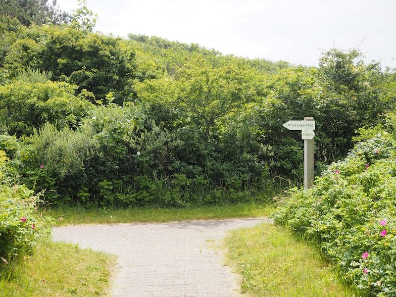 """Wer die Natur besonders liebt, begibt sich darüber hinaus auf den ökologisch-künstlerischen """"Otto-Leege-Pfad"""" inmitten der Insel Juist ..."""