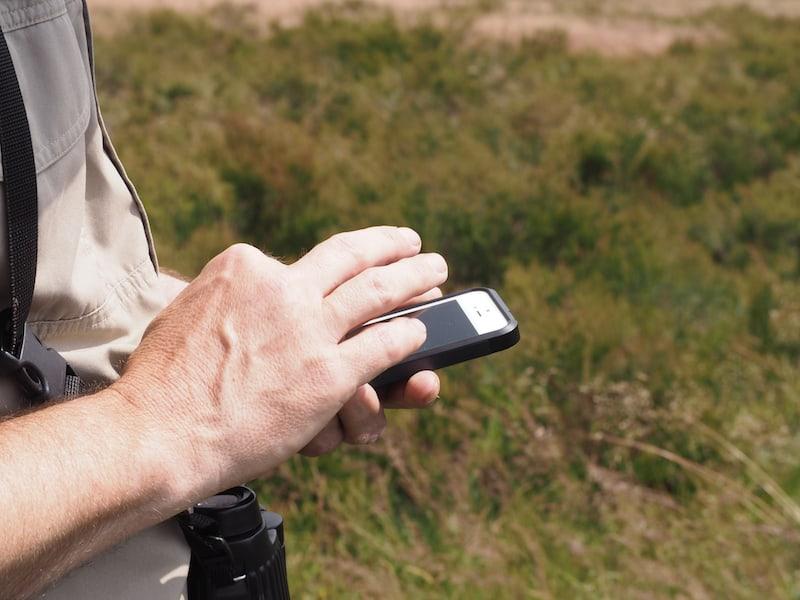 Auch Tierstimmen - Vogelstimmen! - hat er auf seinem Handy gespeichert und kann sie jederzeit abrufen ...