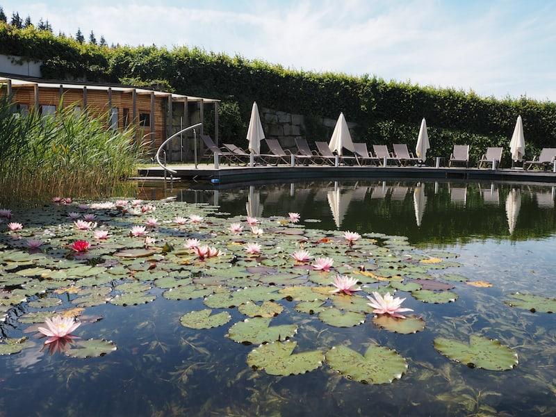 ... und traumhafte Sicht auf den großzügigen Schwimmteich inmitten des Gartens.