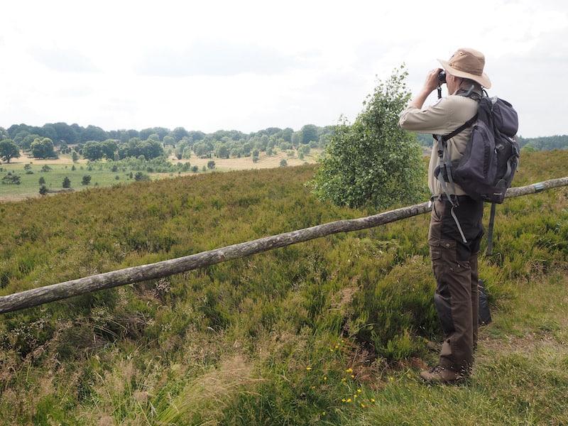 Der überaus belesene und engagierte Diplom-Biologe Jan Blockmann ist mit mir in der Lüneburger Heide unterwegs ...