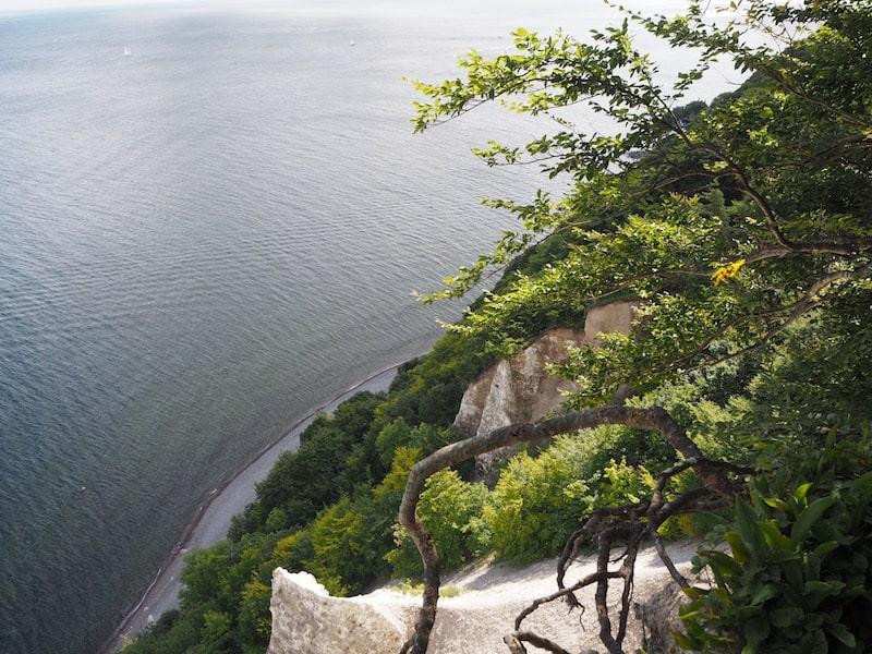... als auch Naturliebhaber ein echtes Reiseparadies: Blick auf den berühmten Kreidefelsen Rügens ganz nahe des Königsstuhl in Sassnitz.