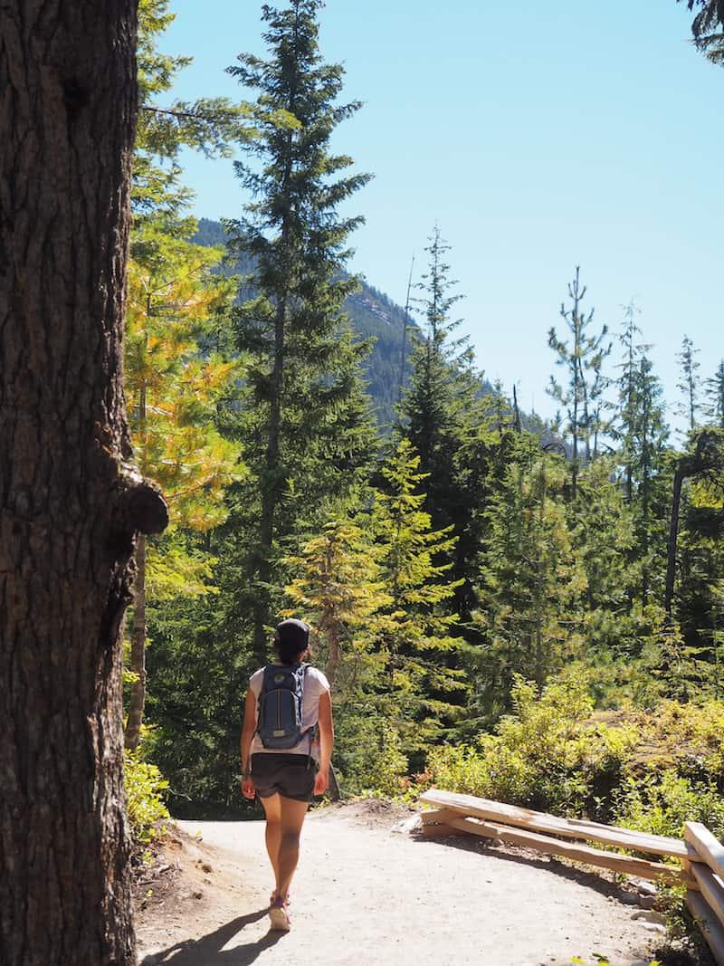 """... und dennoch: Das Land rund um Squamish, wie hier bei der Wanderung zum """"Great Chief Mountain Lookout"""", ist einfach fabelhaft ..."""