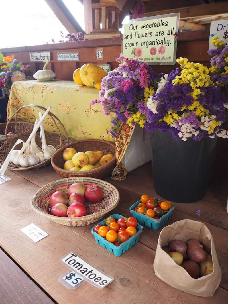 "... and local, ""help-yourself"" farm stands located near almost every driveway on Salt Spring Island."