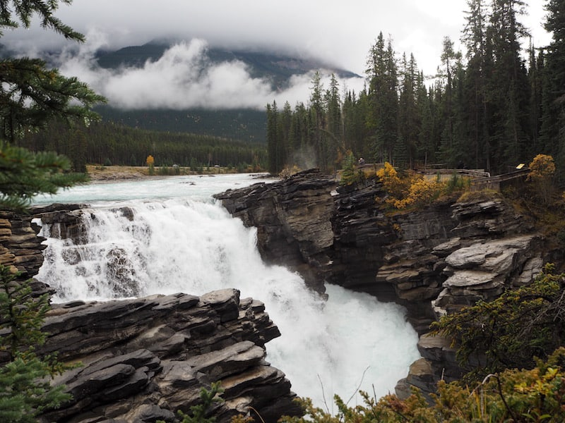 As a first stop, I suggest Althabasca Falls only about half an hour south of Jasper on the 93 National Park Highway.