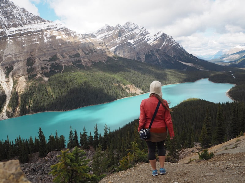 ... be sure to stop at one of my, if not THE favourite place along the entire drive: Peyto Lake near Bow Summit, the road's highest elevation.