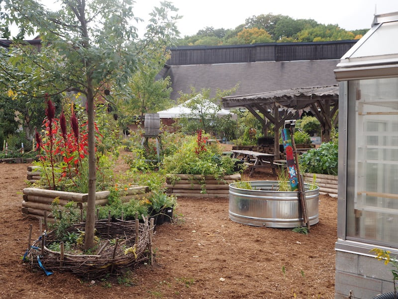 "... all the way to making it one of Toronto's most well-known urban regeneration programs, including this ""children's garden"" here whose beautiful smell still lingers on my mind ..! If you have an afternoon's worth on your trip, really go here and enjoy."