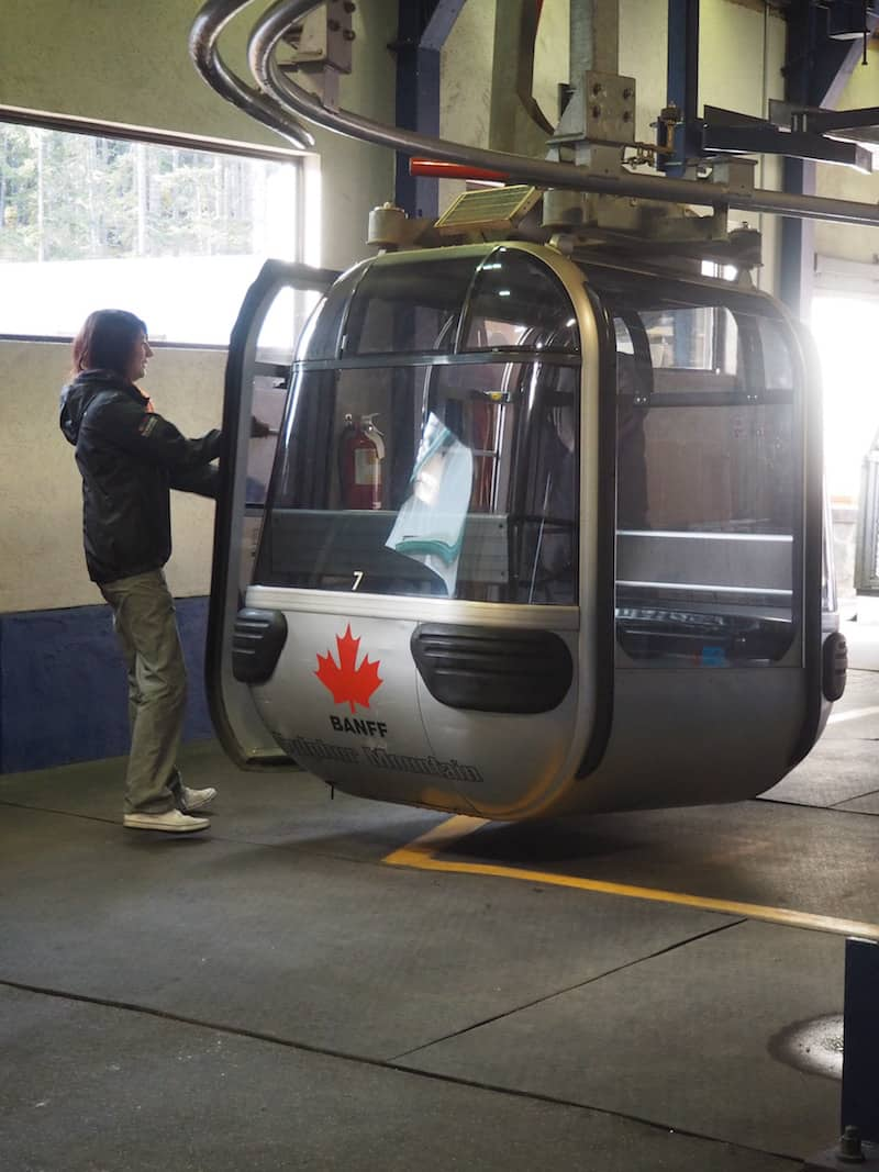 ... the Banff Gondola takes visitors up Sulphur Mountain ...