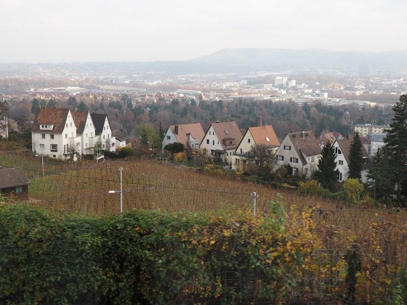 ... und laben uns an Aussichten wie diesen : Stuttgart genießt den Ruf einer ausgezeichneten Weinstadt und hat selbige sogar mitten in der Stadt!