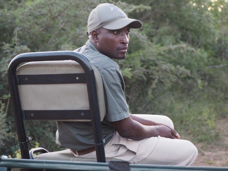 Salomon, unserem einzigartig talentierten Späher ist es gelungen, obig im Gras liegenden Leoparden zu sichten .. Eine gewaltige Leistung.