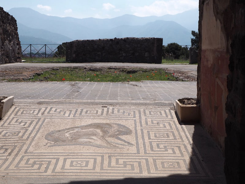 ... perfekt erhaltene Mosaike, gut 2.000 Jahre alt ...