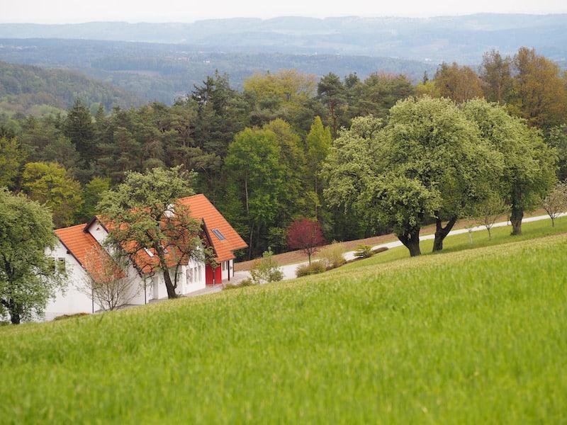 ... während ich, mich noch im Ankommen begriffen, an der wunderschönen Naturlandschaft des Naturpark Pöllauer Tal rund um mich labe.