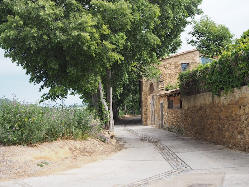 Marta, to start our visit of learning how to decorate, Empordà style, first takes me out ...
