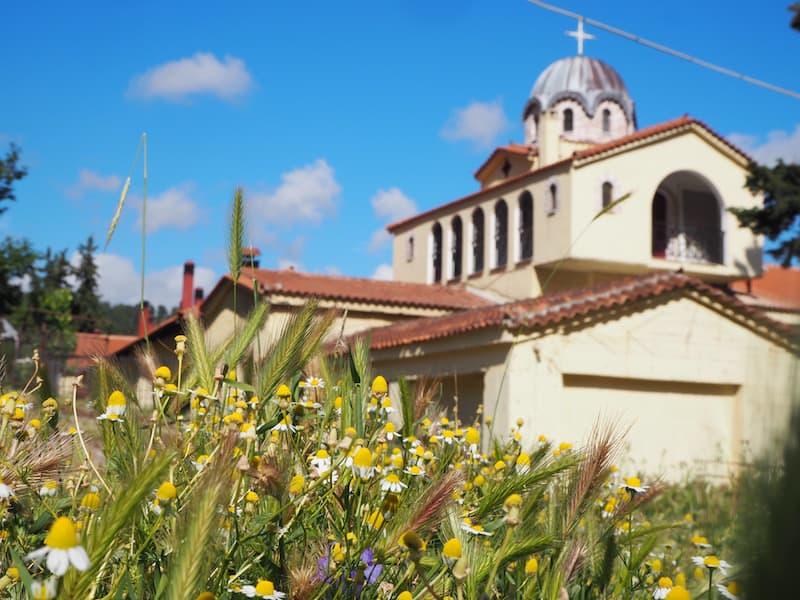 ... ein weiteres entdecke ich bei meiner Fahrt am Meer bzw. durch die frühlingsgrünen Wälder Griechenlands: Das byzantinische Kloster Hosios David ...