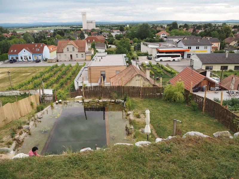 ... und lassen den Tag beim Blick über den neu angelegten Schwimmteich, sowie das gesamte Tullnerfeld von Kirchberg am Walgram aus, ausklingen ...