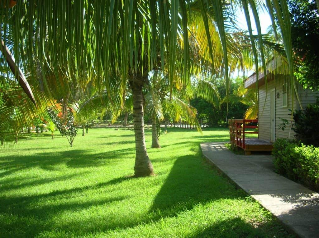 ... und darüber hinaus, finden wir in diesen schönen, von sattgrünen Wiesen umgebenen Bungalows Ruhe.