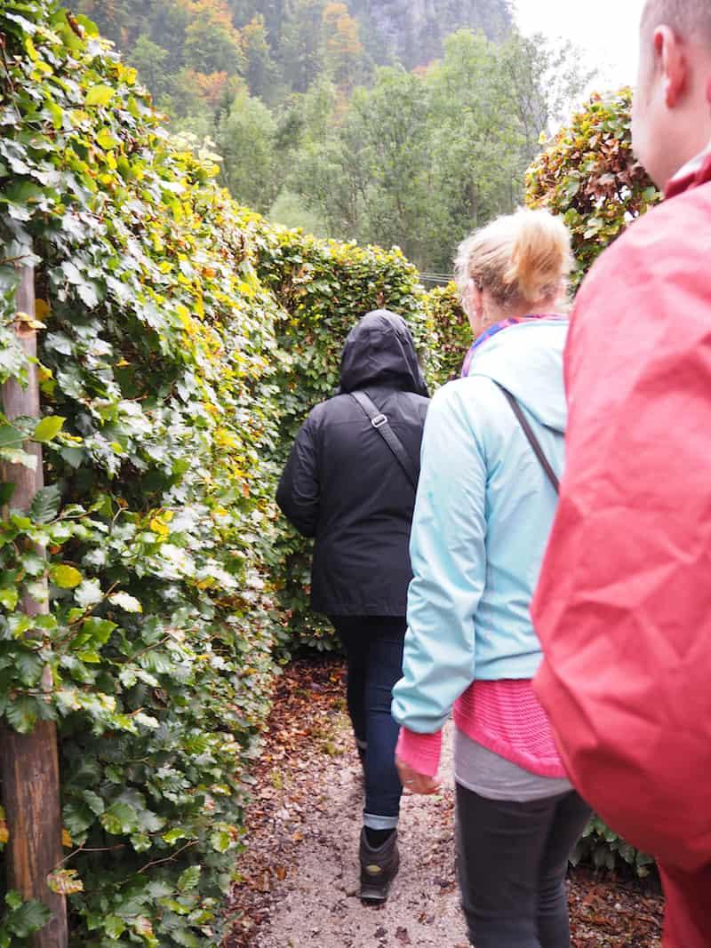 """... von hier aus geht es mitten hinein ins """"grüne Labyrinth"""", zur Erkundung des """"begehbaren, ökologischen Fußabdruckes"""" nämlich ..."""