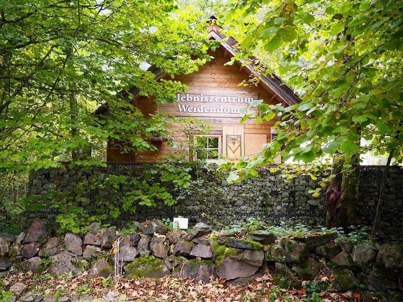 """... aber auch das sehr charmant gestaltete, zum Mitmachen einladende Erlebniszentrum """"Weidendom"""" am Eingang zum Nationalpark Gesäuse ..."""