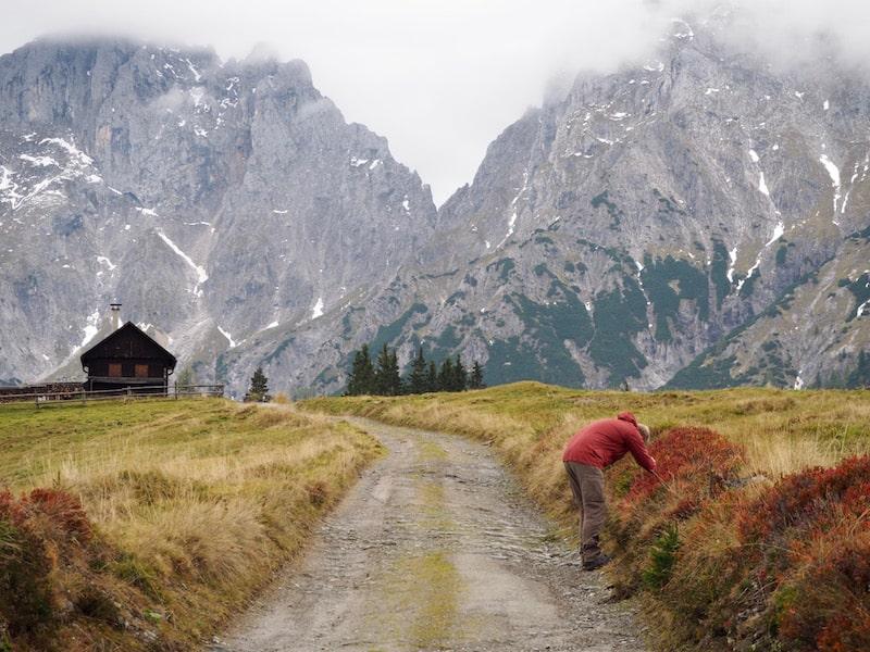 Das mächtige Gesäuse in den nördlichen Kalkalpen Mitteleuropas ...