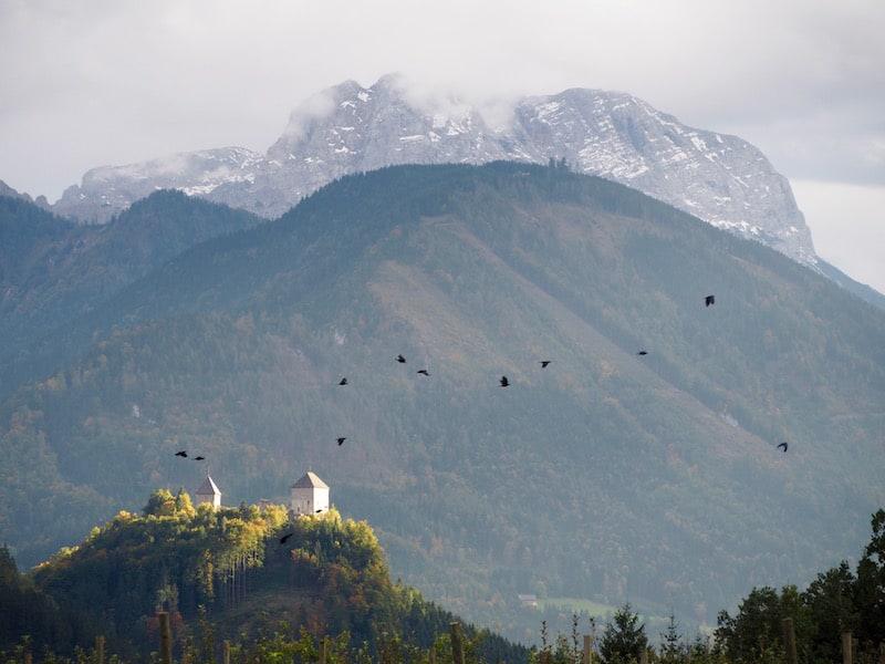 ... und kommen wir vom Besuch bei ihr, mit Blick zurück auf das Tal bei St. Gallen, einfach nur mehr ins Schwärmen ...