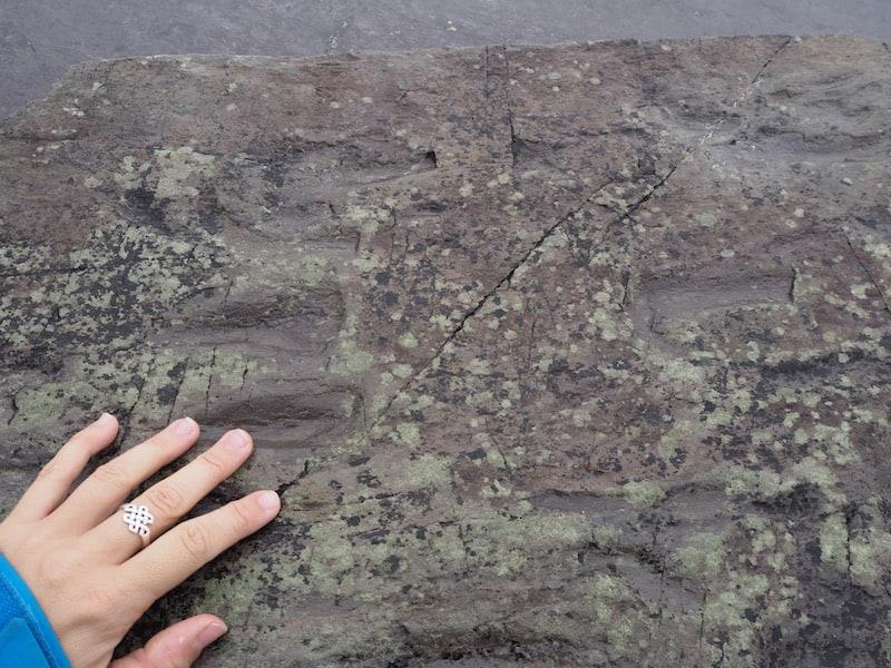 ... sowie geschichtlich bedeutsam: Viele Hundert Millionen Jahre alt sind diese Echsen-Fußabdrücke im Stein, angeblich die ersten Lebewesen, die dazumal an Land gingen ..!