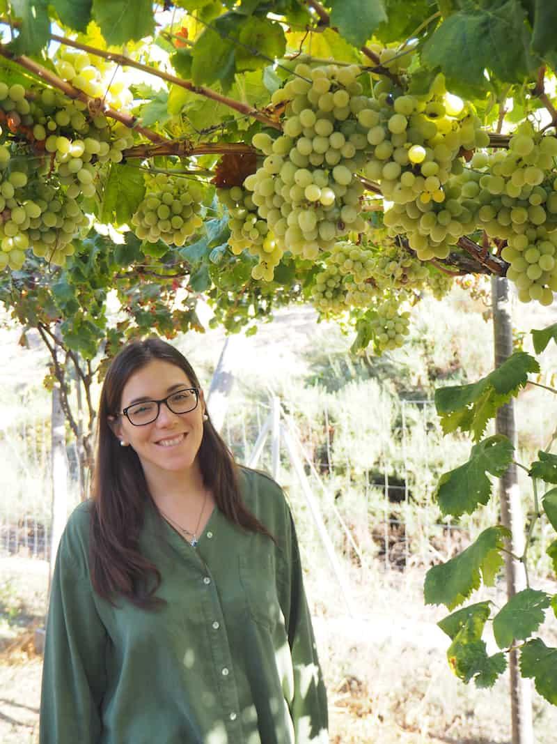 """... Rosa hat in der berühmten spanischen Rioja studiert und ist nun zu ihren familiären Wurzeln zurückgekehrt, um sich mit ihrer Firma """"Envinados"""" der Qualitätssteigerung des hiesigen Weinbaus zu verpflichten, sie organisiert dazu erlebnisreiche Weinrouten in der gesamten Region ..."""