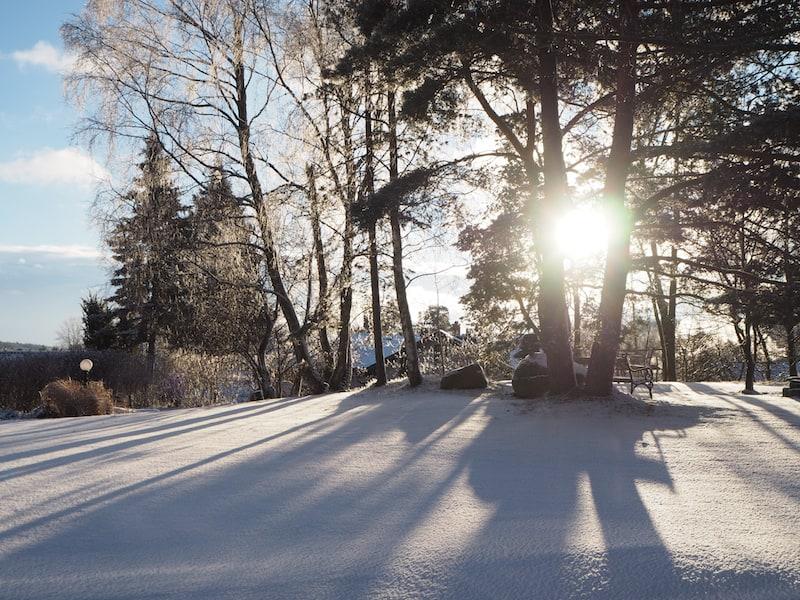 Achtsamkeit: Zeit, den Blick auf die Wunder der Natur zu richten ...