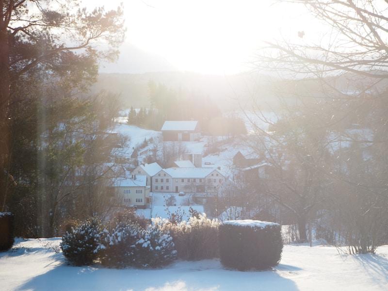 ... sowie draußen vor der Haustür, die zauberhafte, friedvolle Natur rund um den kleinen Ort Langschlag.