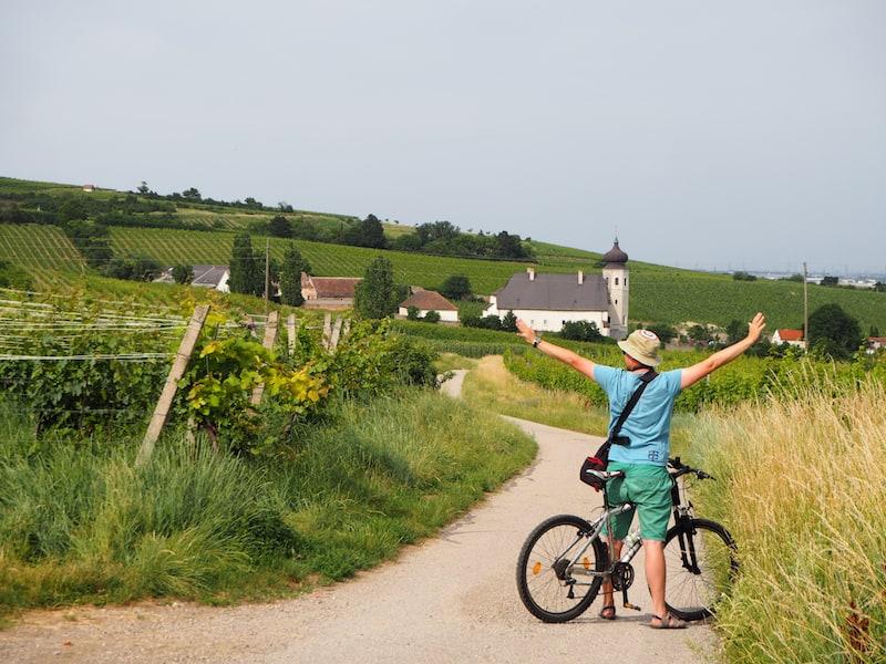 ... bevor es weitergeht durch die Weingärten in Richtung Freigut Thallern ...