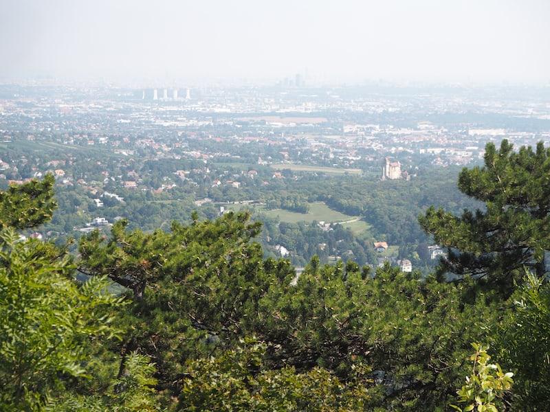 ... und verdient, nach dem ersten Aufstieg, diesen Blick über Wien genießen.
