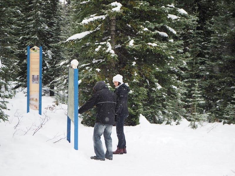 """... oder aber auch verschneite Parkplätze zu """"bezwingen"""": Bei unserem Zwischenhalt am Peyto Lake ..."""
