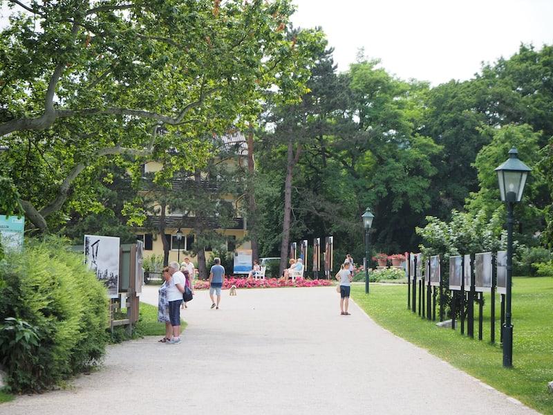 ... da sind wir nicht alleine: Blick in den Doblhoffpark nahe des Schloss Hotel Weikersdorf ...