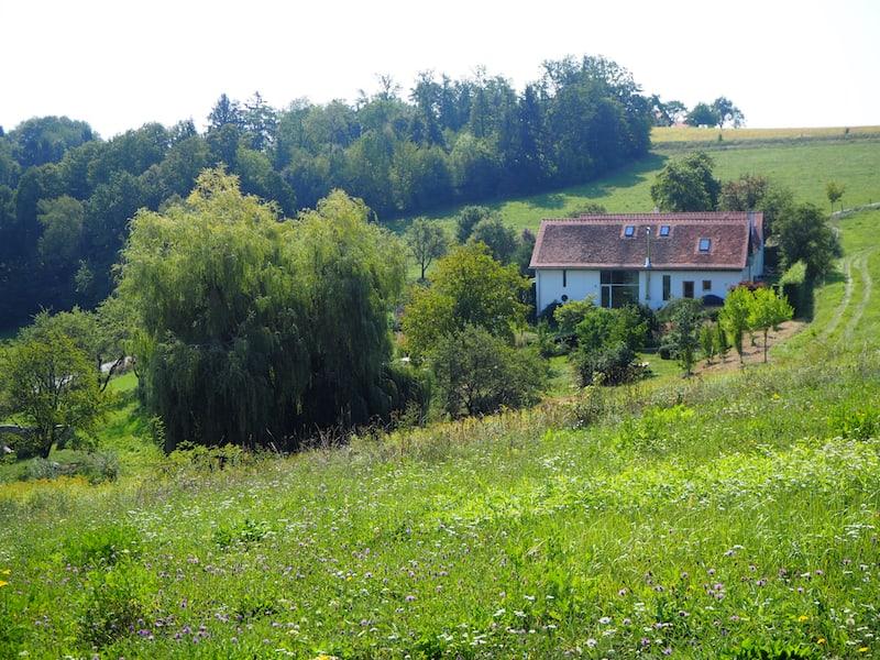 ... und auf dem 10 Hektar großen Grundstück ...