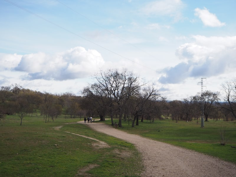 ... samt angrenzendem Park-Spaziergang ...