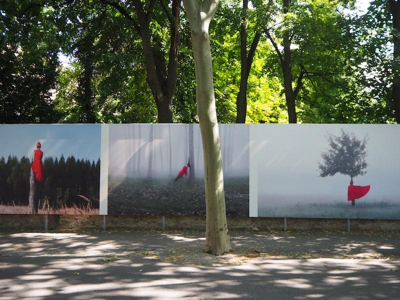 Hier setzt sich die junge Künstlerin Maia Flore aus Frankreich mit dem Thema Umwelt