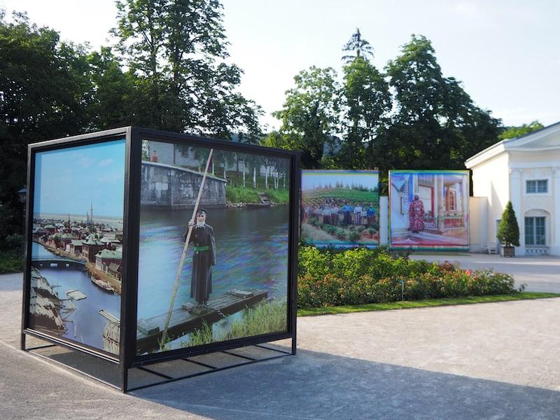 Fotogalerie im Rosarium des Doblhoff-Parks in Baden.