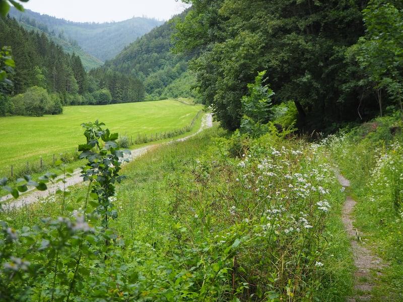 Etwas weiter weg lockt die das Stift umgebende Natur zu einem ausgedehnten Spaziergang ...
