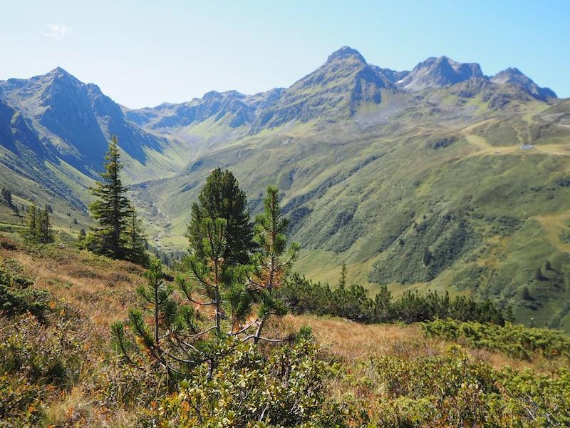 ... nach dem ersten Teil des Panoramaweges, der durch den Wald führt, öffnet sich der Blick in alle Himmelsrichtungen mit diesem mächtigen Panorama ...