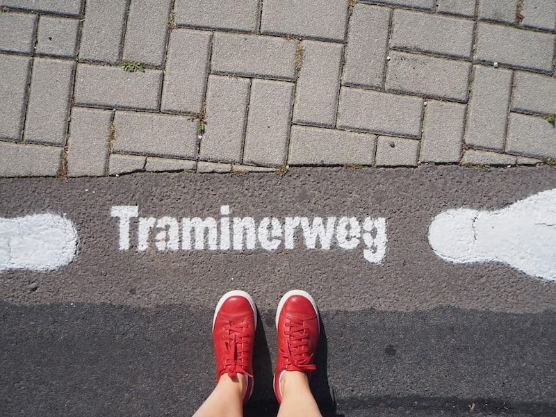 """""""Ihr wollt am Traminerweg spazieren gehen? Wart', da komm' i gleich mit!"""", lacht uns Lisa Frühwirth zur Ankunft auf ihrem Weingut entgegen."""
