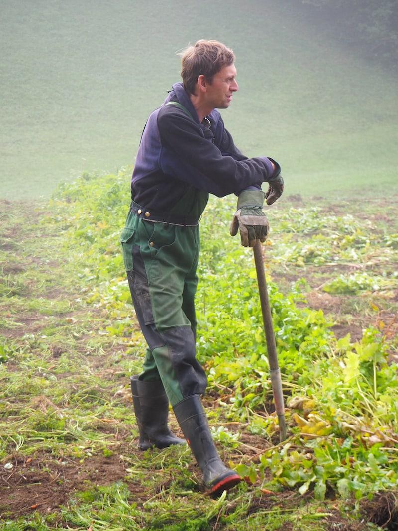 ... wir folgen dem Familienvater und Landwirt Andreas auf seine Gemüsefelder ...