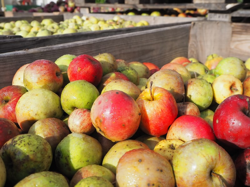 ... das Obst ist im Herbst erntefrisch und duftet einfach herrlich ...