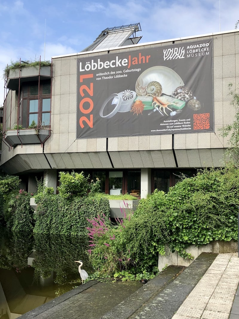 Düsseldorf hat uns zum einen mit seinem groß angelegten Aquazoo bezirzt ...