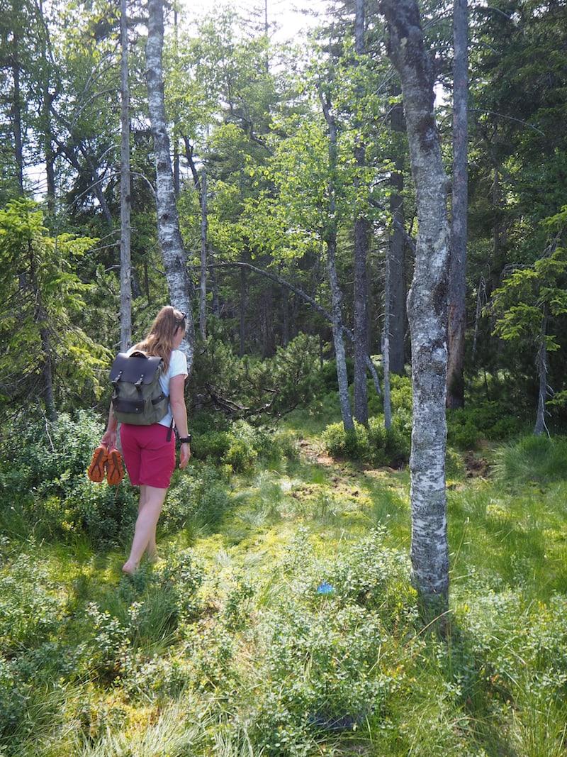 Liebe Katharina, vielen Dank für diese zauberhafte Barfusswanderung durch Hochmoor und Wald! Dir würde ich überall in der Natur hin folgen.