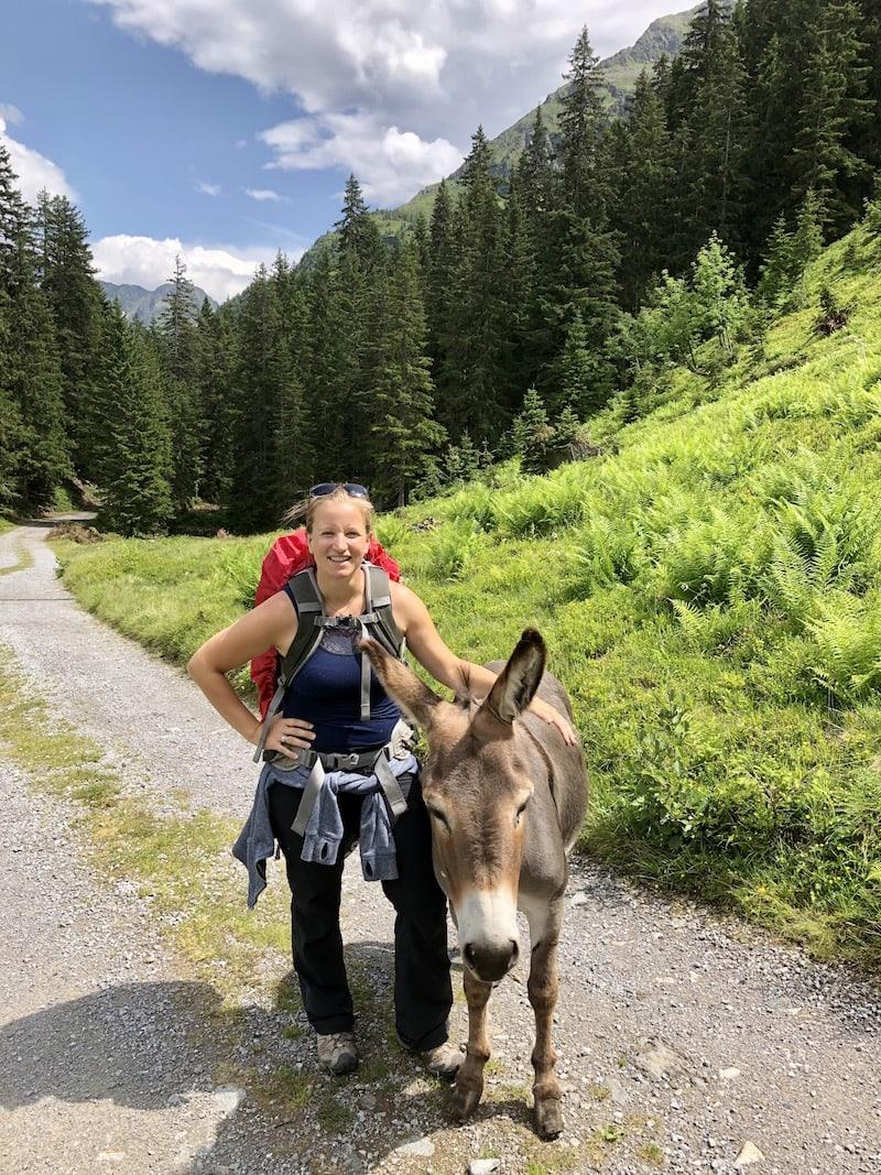 ... auch Hansi der Esel der zur Alpe gehört wird mir in Erinnerung bleiben!