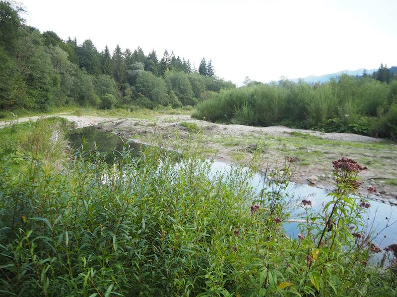 """Besonders in Erinnerung geblieben ist mir der Blick auf die Altenauer Fluss-Schleifen: Hier """"darf"""" der Fluss noch wild und frei mäandern und sich nach jeder Überflutung ein neues Bachbett suchen ..."""